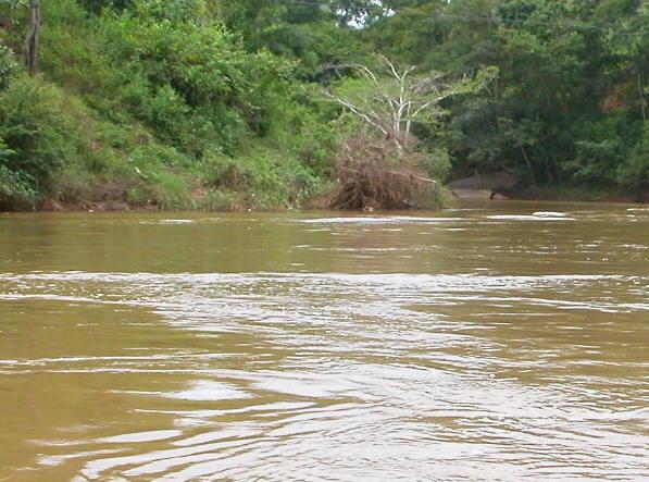 Corpo é encontrado preso em galhos em rio na zona rural de Ipanema
