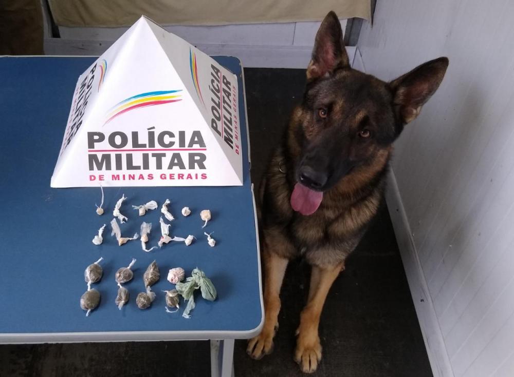 Com ajuda do Aquiles, PM apreende menor com drogas no bairro Santana em Manhuaçu