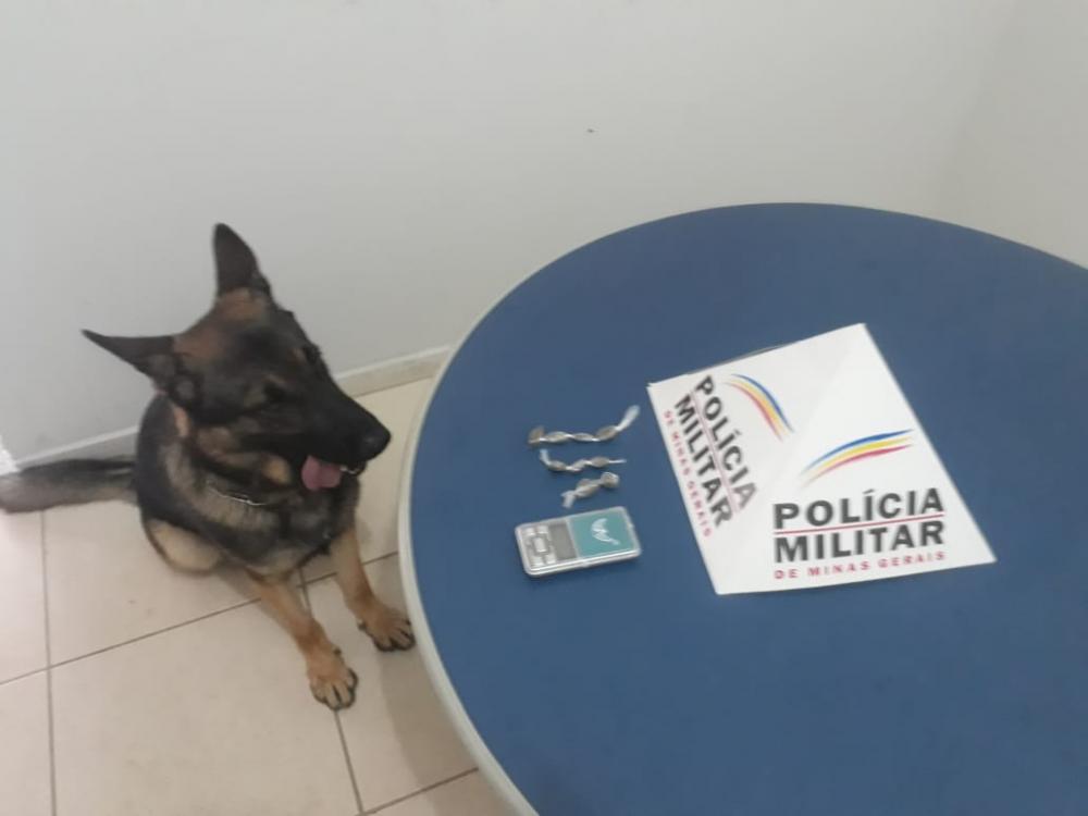 Drogas apreendidas no bairro Santa Luzia em Manhuaçu com apoio do Aquiles