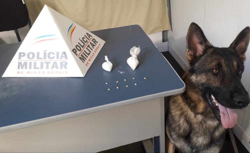 Equipe Rocca durante operação Batida Policial neste sábado,04/04, aplicou o cão farejador Aquiles