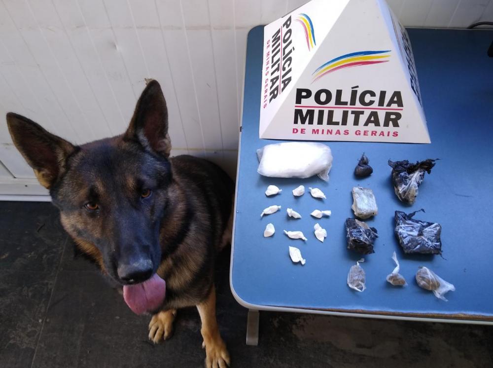 Na manhã deste sábado, 09/05, durante operação policial, equipes da ROCCA - Rondas Ostensivas Com Cães, com auxílio do cão farejador Aquiles, realizaram buscas em locais denunciados com ponto de venda de drogas no bairro São Francisco de Assis em Manhuaçu