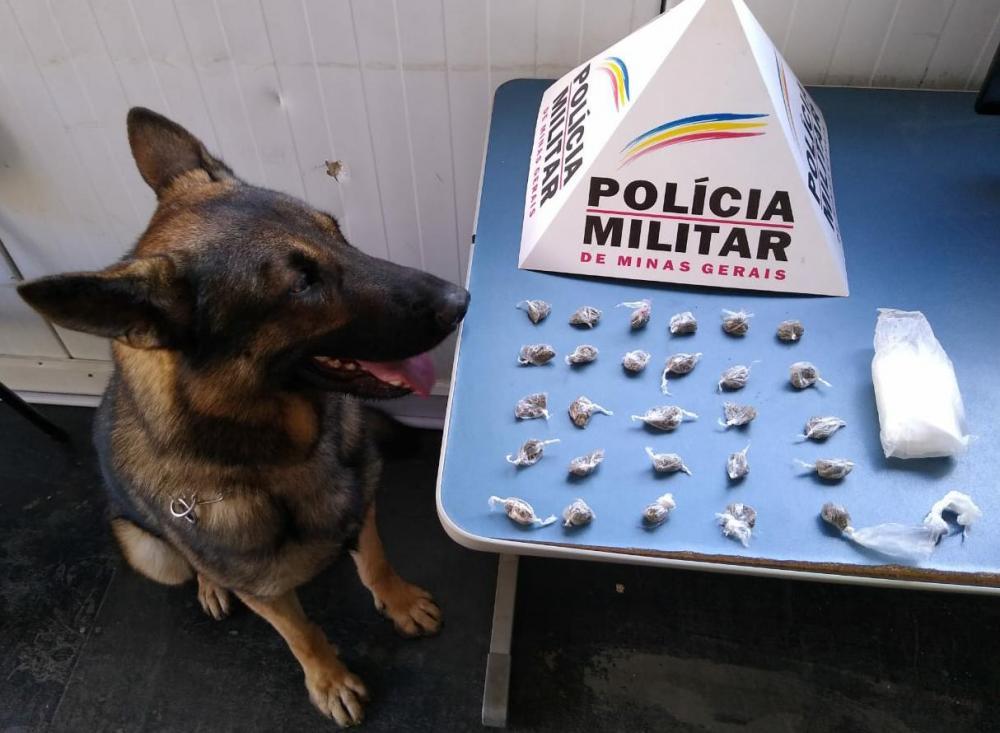 Nesta quinta-feira, 14, durante operação, equipes policiais com auxílio do cão farejador Aquiles, realizaram buscas em locais denunciados pela venda de drogas.