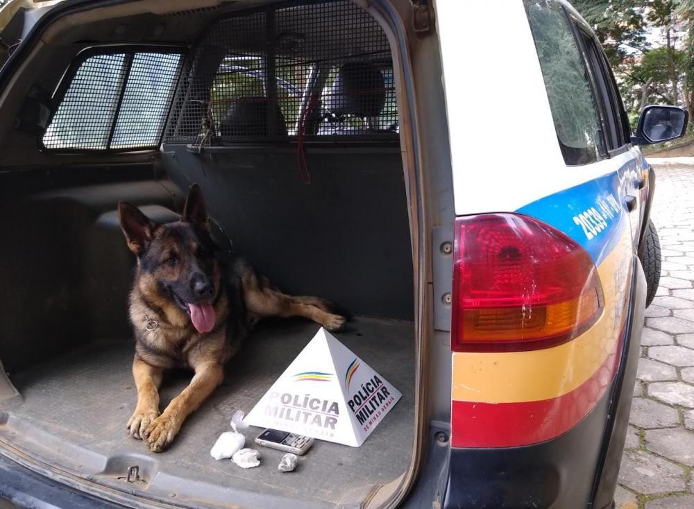 Aquiles um cão com alta habilidade e que sempre combate ao tráfico de drogas em Manhuaçu e região