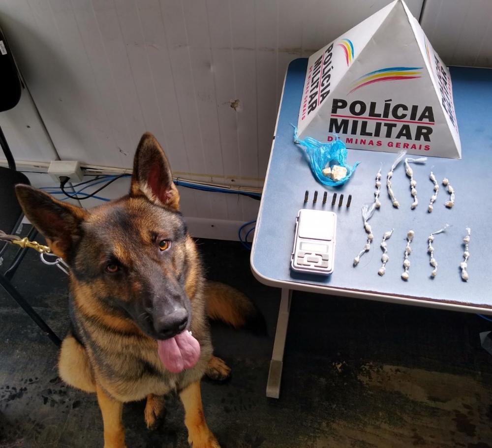 Após receber informações sobre tráfico de drogas, policiais militares compareceram até o local informado, onde lograram êxito na abordagem dos autores e entorpecentes no bairro Santana.