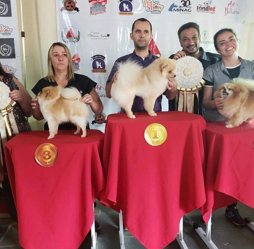 AuQmia e Hydra Pet Society firmam parceria em Manhuaçu