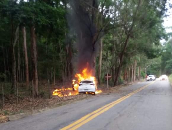 Carro pega fogo após bater em árvore na MG-111