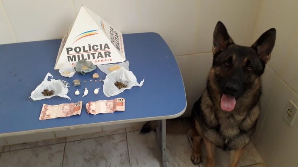 Drogas é apreendidas em Reduto com apoio da ROCCA