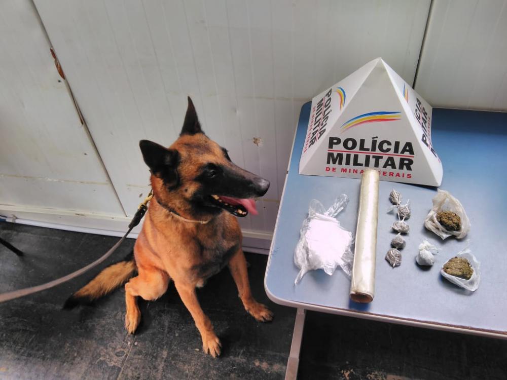 Drogas apreendias em Manhuaçu com ajuda do cão de faro