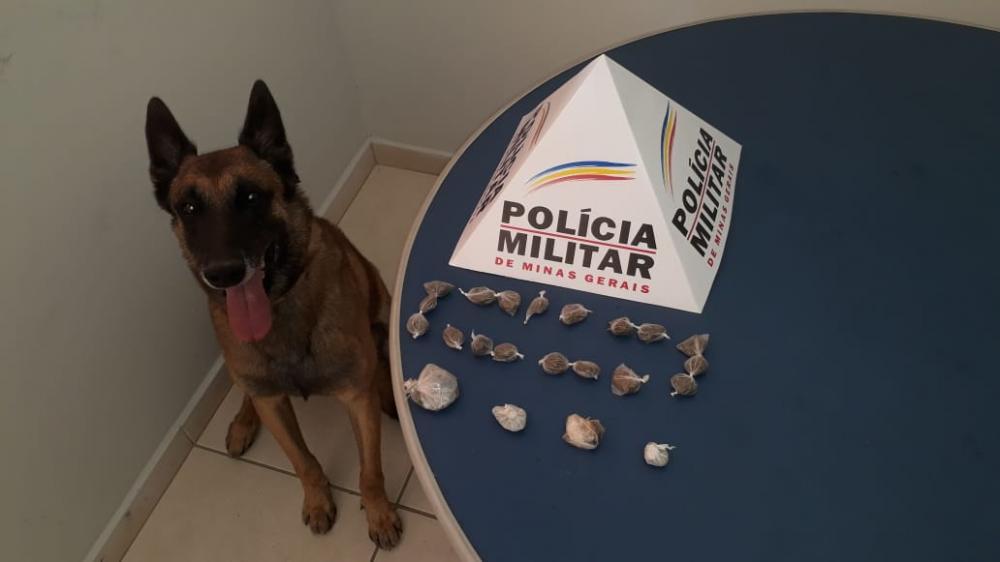 Policia Militar de Manhuaçu combate o tráfico de drogas na cidade